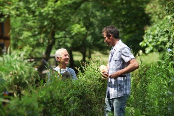 Senior man and mature men chatting over plants in garden